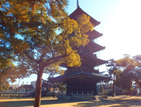 pagoda in Zentsuji temple