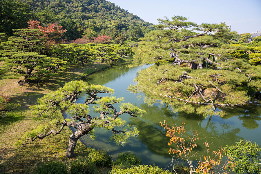 The over 1,400 pines attract visitors to the garden year round and make Ritsurin Garden Japan's foremost pine garden.