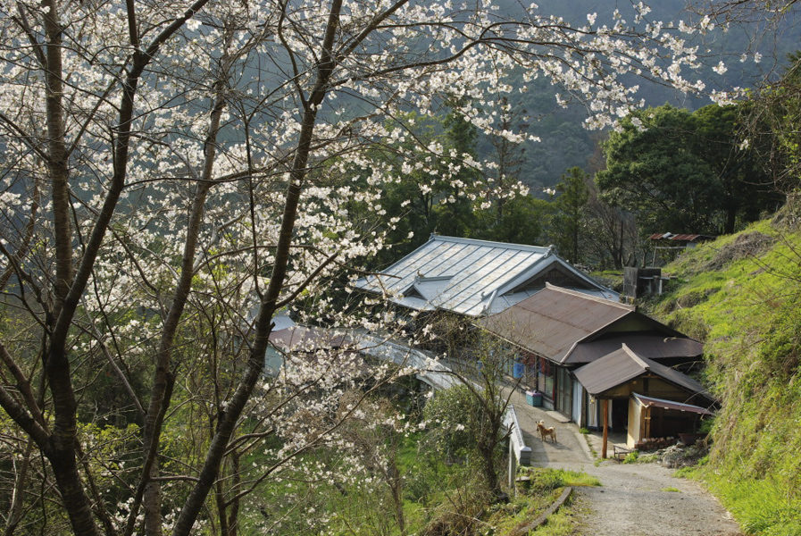 Happy Raft's delightful guesthouse on the side of a mountain overlooking the gorge.