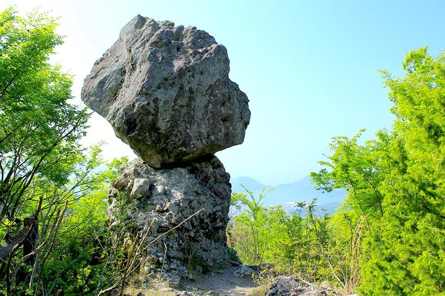 "The ""Matsutake"" mushroom rock, an artwork millions of years in the making."