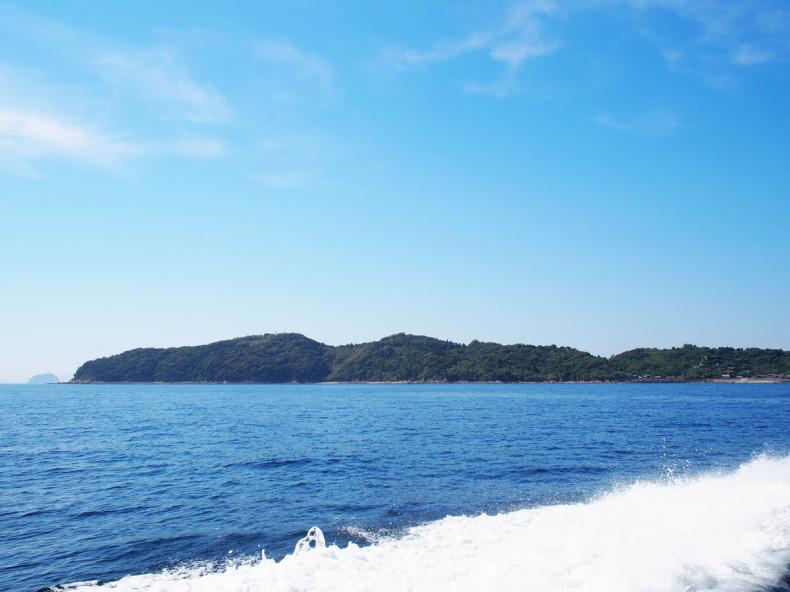 Getting To Aoshima Cat Island