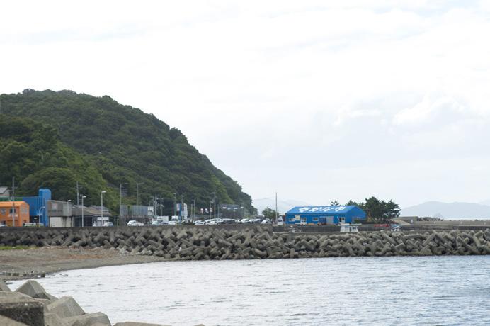 鳴門 海鮮 市場